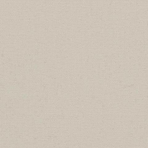 Starlet FR 4899 1